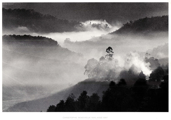 Cameron High Lands - Malaysia, 1987 by Christophe Boisvieux - 34 X 47