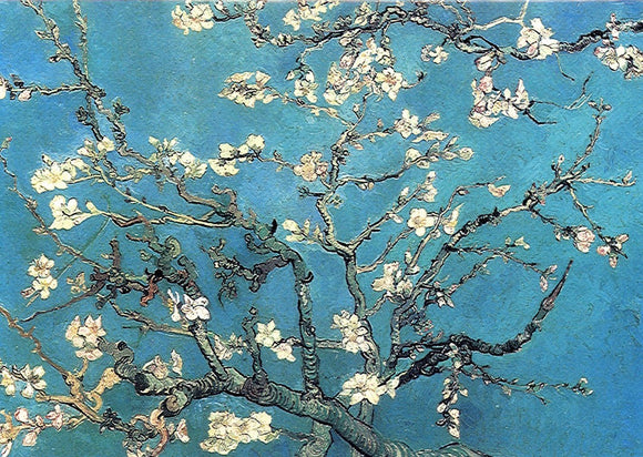 Branch of Almond Tree in Blossom, 1890