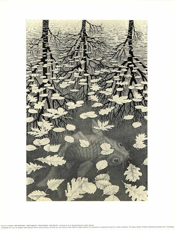 Three Worlds, 1955 by M. C. Escher - 13 X 17 Inches (Art Print)