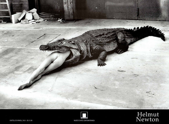 Crocodile Eating Ballerina, Wuppertal, 1983 by Helmut Newton - 24 X 32 Inches (Art Print)