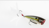 Strike King KVD Splash Jr - Fishing Supercenter