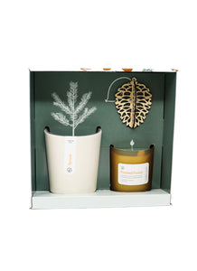 Modern Sprout Spruce Gift Set Gather
