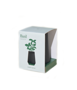 Modern Sprout Black Tapered Tumbler  Basil - Gabrielle's Biloxi