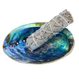 Smudge Set - Abalone Shell, Stand, Feather, & White Sage Bundle