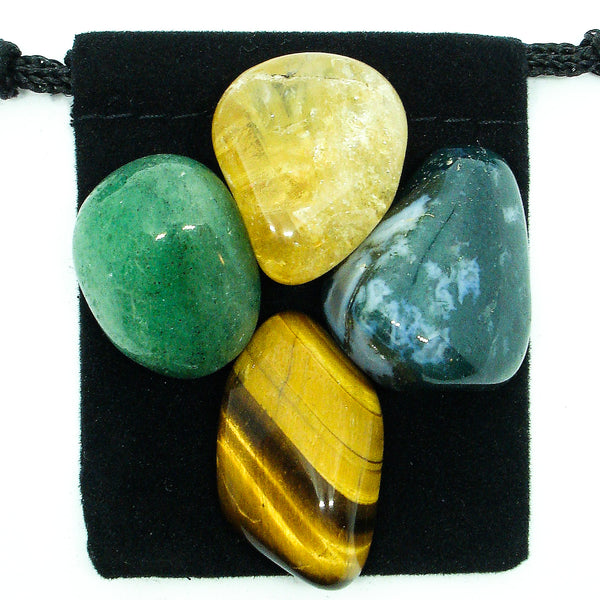 Abundance & Prosperity Tumbled Crystal Healing Set