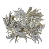 Smudge - White Sage Loose Leaves & Stems (1 oz)