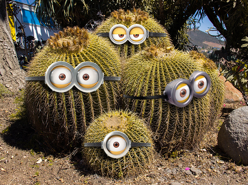 What if minions were crossed with golden barrel cacti?
