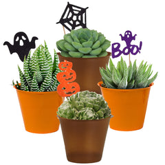 Halloween Collection 4 Pack
