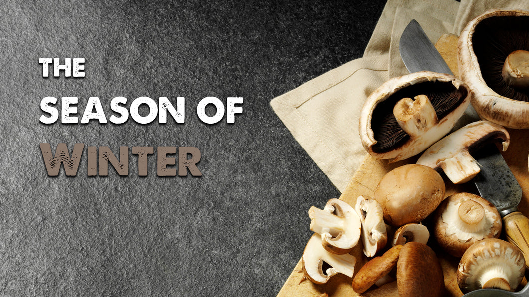 Bundle 3: Introduction + Winter: Season of Kidneys and Bladder