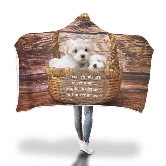 Friend Gift Puppies in Basket - Hooded Blanket - True Friends Are Never Apart ...