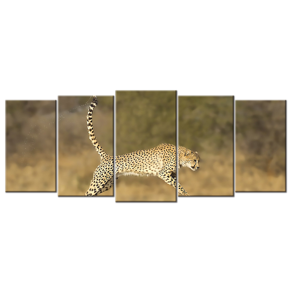 Cheetah Canvas Wall Art - Large 5-panel 72 x 32 inches