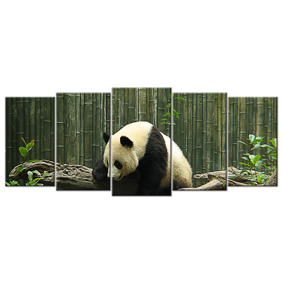 Panda Bear Canvas Wall Art - Extra Large 5-panel 92 x 40 inches