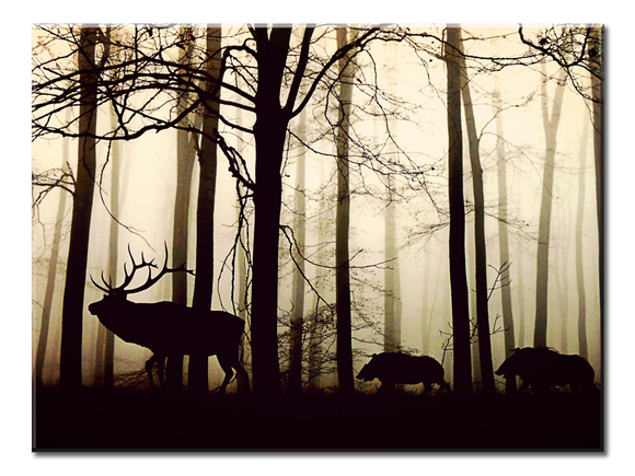 Foggy Forest Canvas Wall Art - Extra Large 1-panel 40 x 30 inches