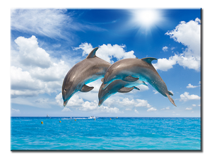 Dolphins Jumping Canvas Wall Art - Extra Large 1-panel 40 x 30 inches