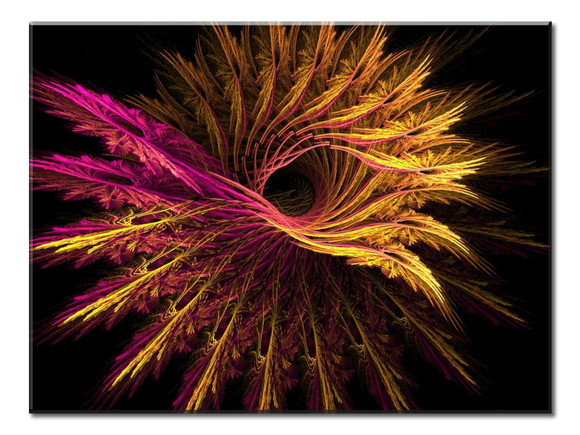 Fractal Feathers  Canvas Wall Art 1-panel 24 x 18 inches