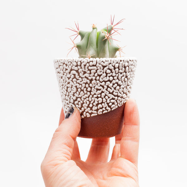 Mini Beaded Planter