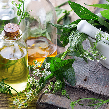 Herbal Wisdom for Allergy Relief