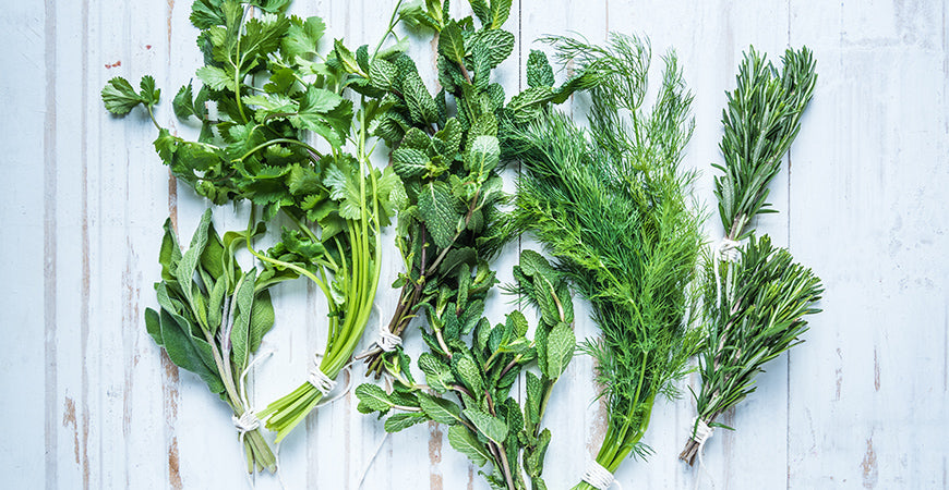 Put Some Spring in Your Step with These Cleansing Herbs