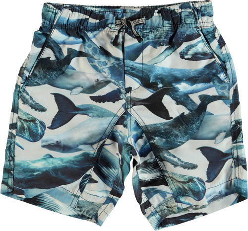 Nario Whales UV50+ Protective Swim Trunks