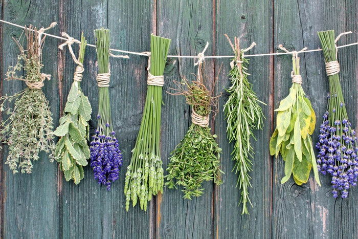 Why you should add herbs to your diet