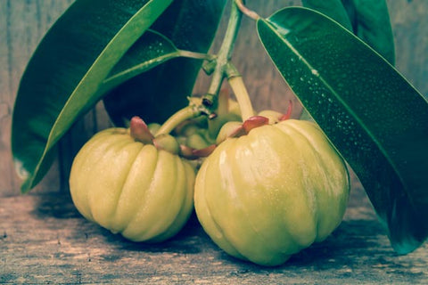 Garcinia Pure Supplement