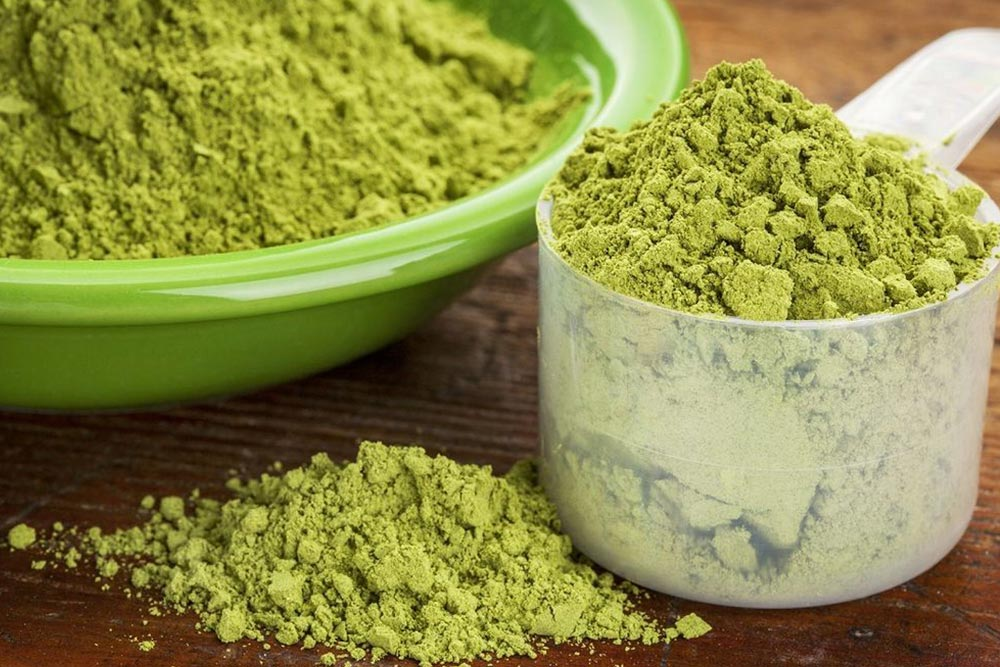 Moringa Powder Scoops