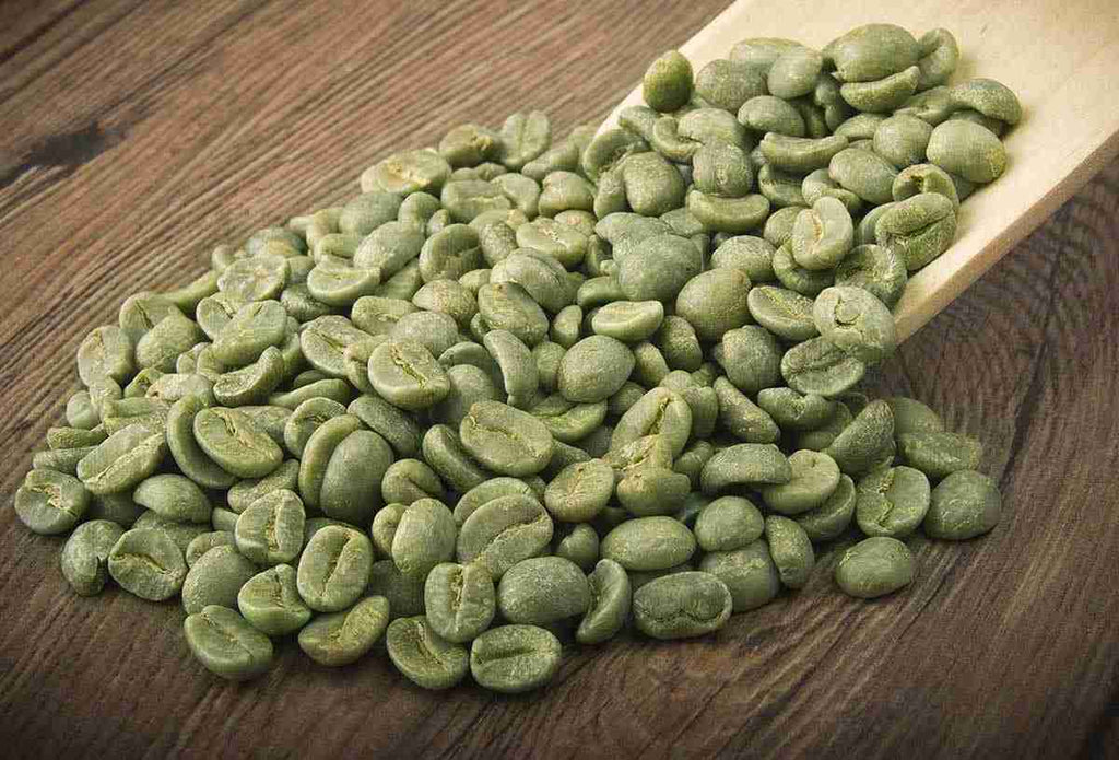 Best Green Coffee Bean Extract With  Chlorogenic Acid