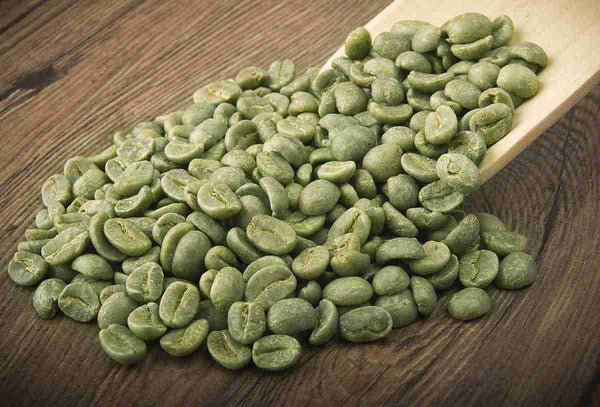 Green Coffee Bean Supplements