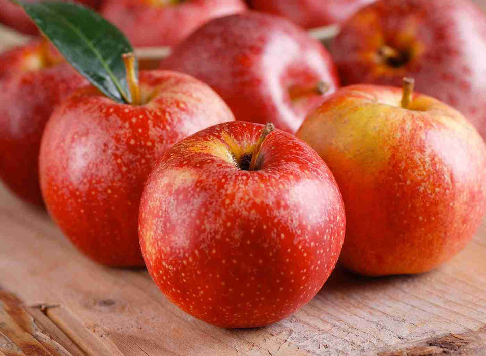 Apple Cider For Fat Burning