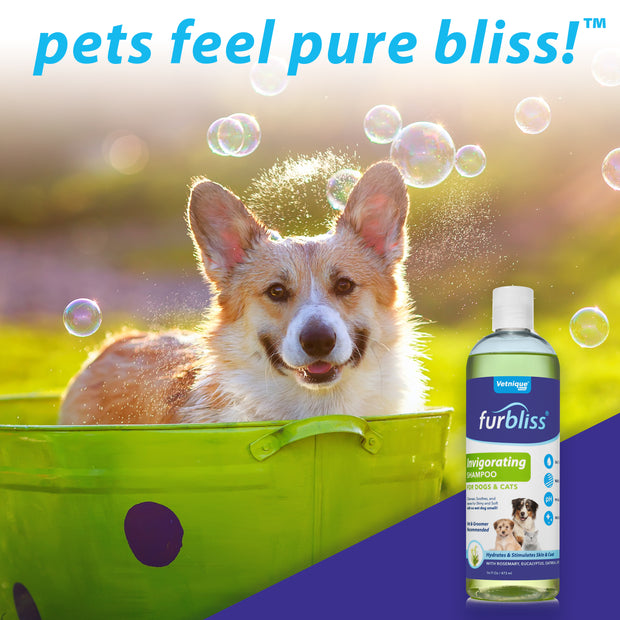 Furbliss® Invigorating Dog & Cat Shampoo - 16 oz