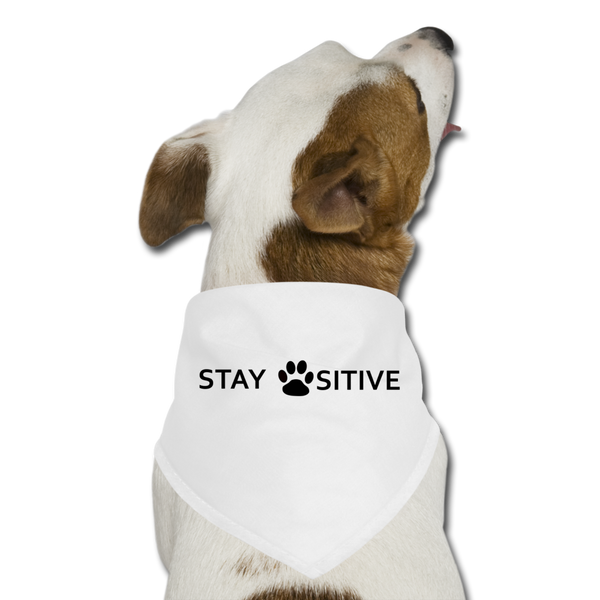 """Stay Positive"" Dog Bandana - white"