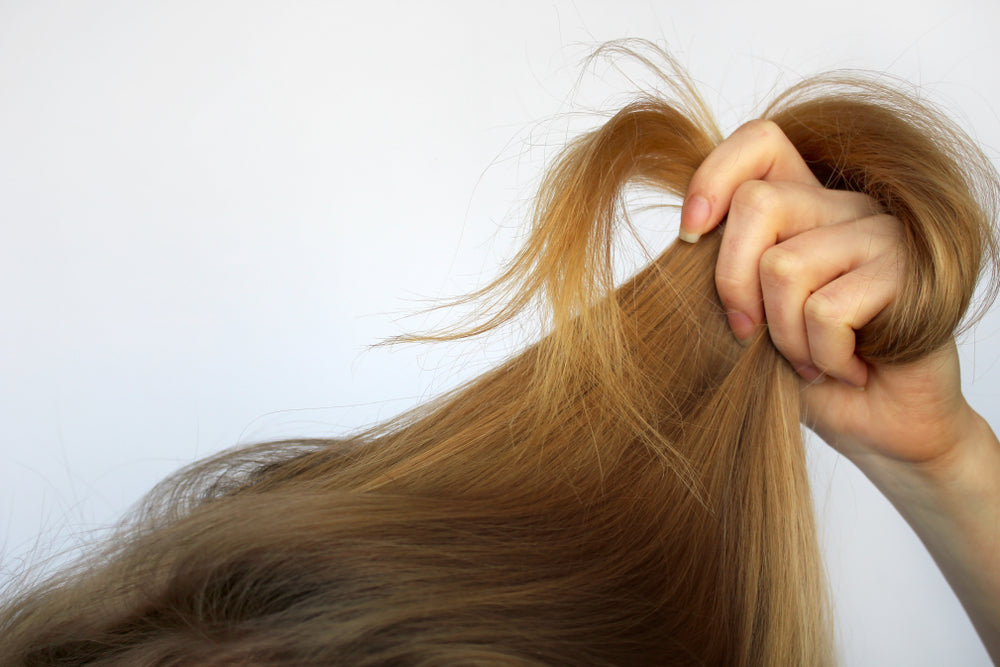 How To Determine Your Hair Type & The Right Masque For It – L'ange Hair