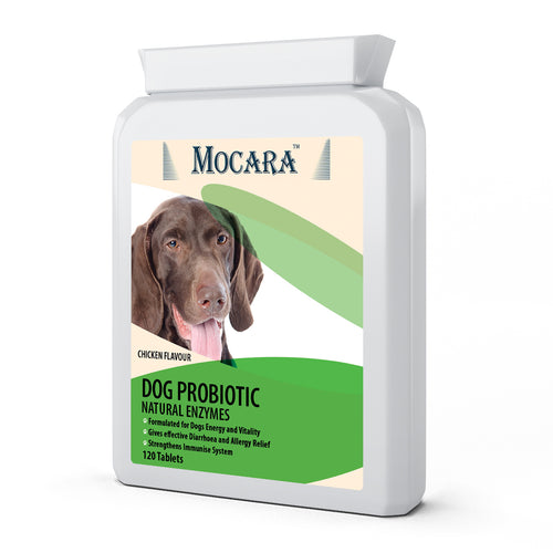 Mocara Dog Probiotic Natural Enzymes - Chicken Flavoured Treat Supplement Tablets 120