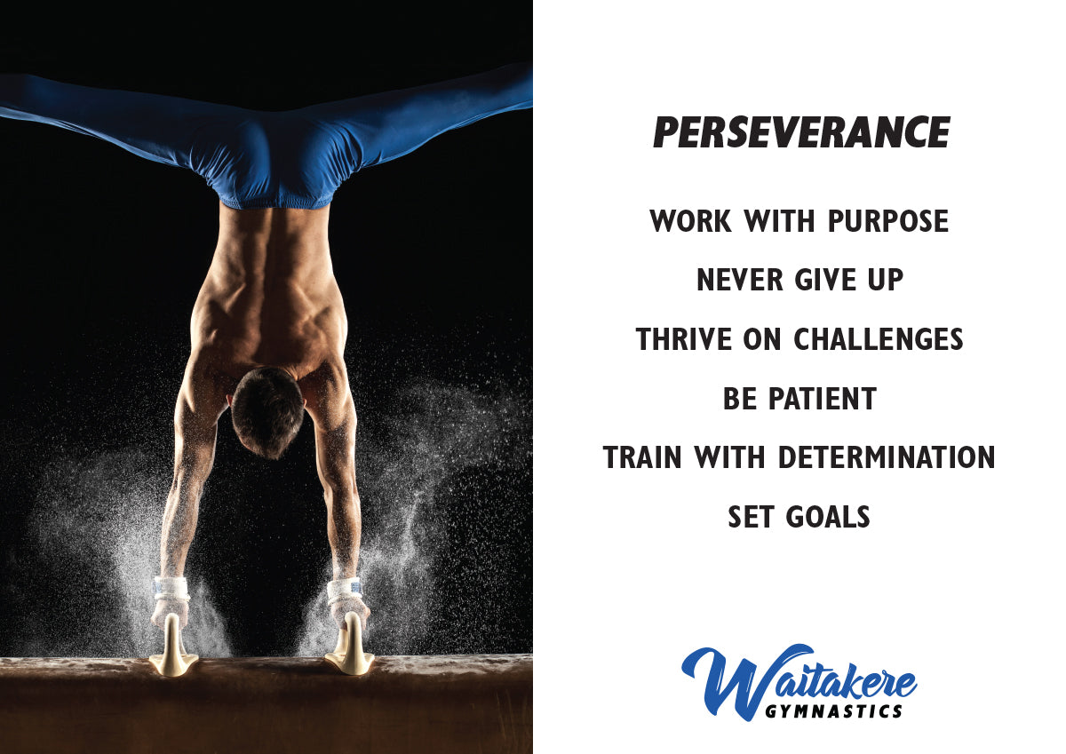 Club Value - Perseverance