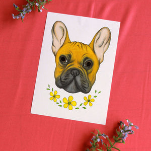 French Bulldog 5'' x 7''
