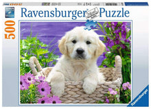 Sweet Golden Retriever Puzzle 500pc