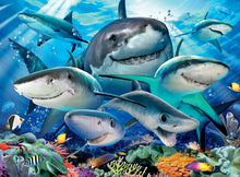 Smiling Sharks Puzzle 300pc