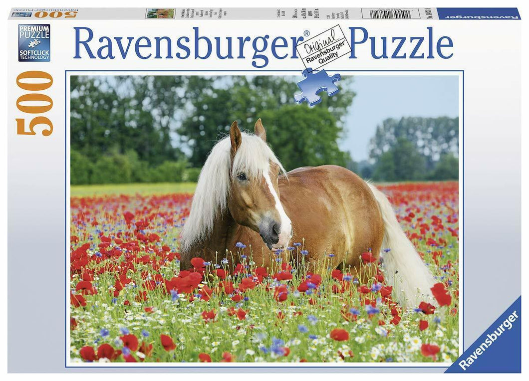 Horse in the Poppy Field Puzzle 500pc