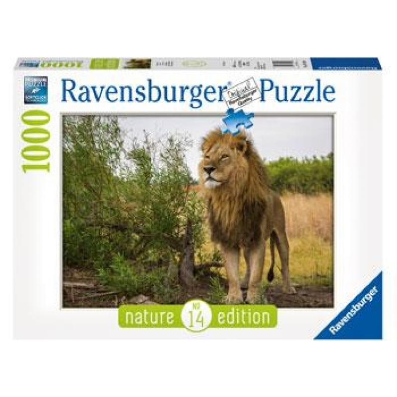 King of the Lions Puzzle 1000pc
