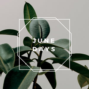 June Days - Single [Retro Summer]