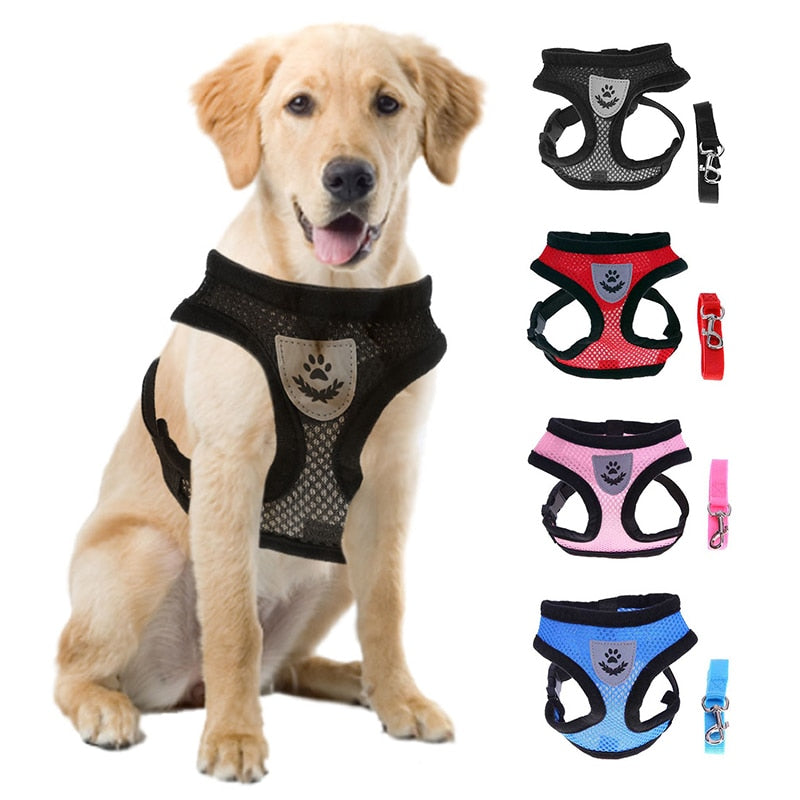 Small Dog Mesh Harness And Leash Set