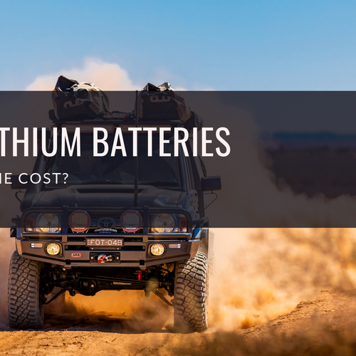 Are lithium batteries worth the cost?
