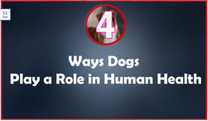 4 Ways Dogs Play a Role in Human Health