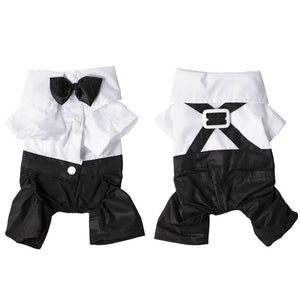 Pet dog black clothing with bow tie