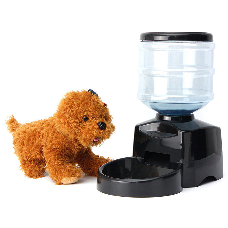 dog feeder automatic id large