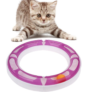 DIY Fun Cat Pet Track and Ball Crazy Toy