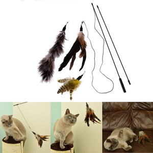 Cat Stick Toy Wire Teaser
