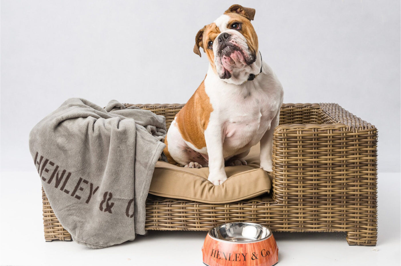 Henley Co Designer Dog Beds And Accessories
