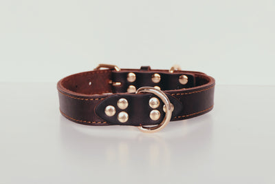 RAF Genuine Leather Dark Tan Collar