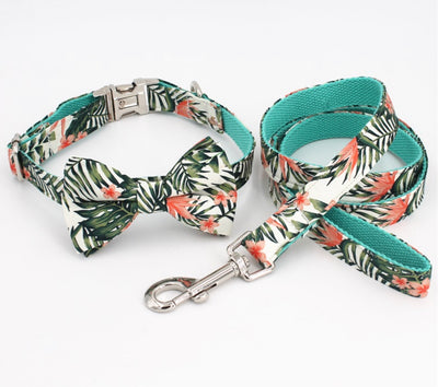 The Ellen Bow Tie Collar & Lead